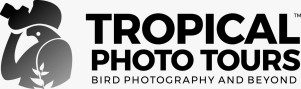 Tropical Photo Tours
